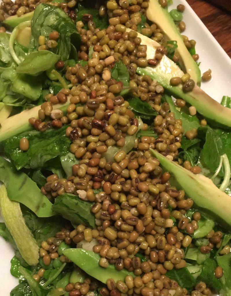 maş fasulyeli sebzeli salata
