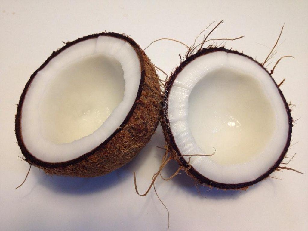 raw vegan tatlı yaparken en çok kullanılan malzeme hindistan cevizi