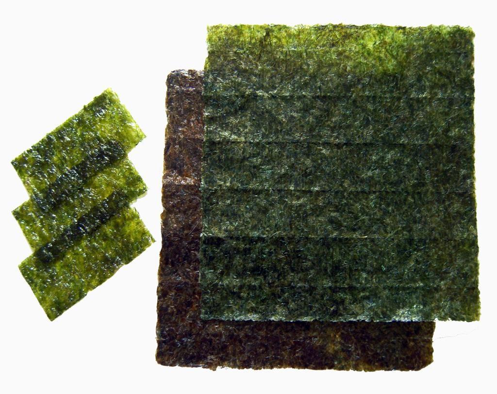 susi-yosunu
