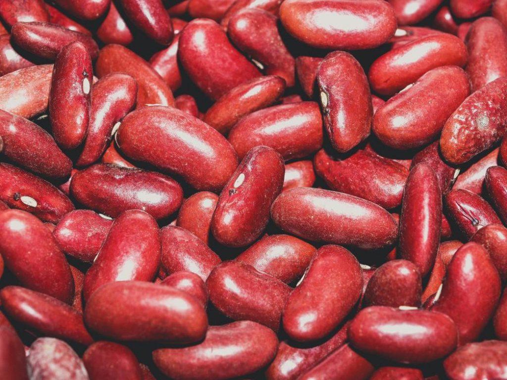meksika fasulyesi konserve olarak da satılıyor