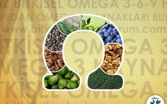 vegan omega 3 kaynakları