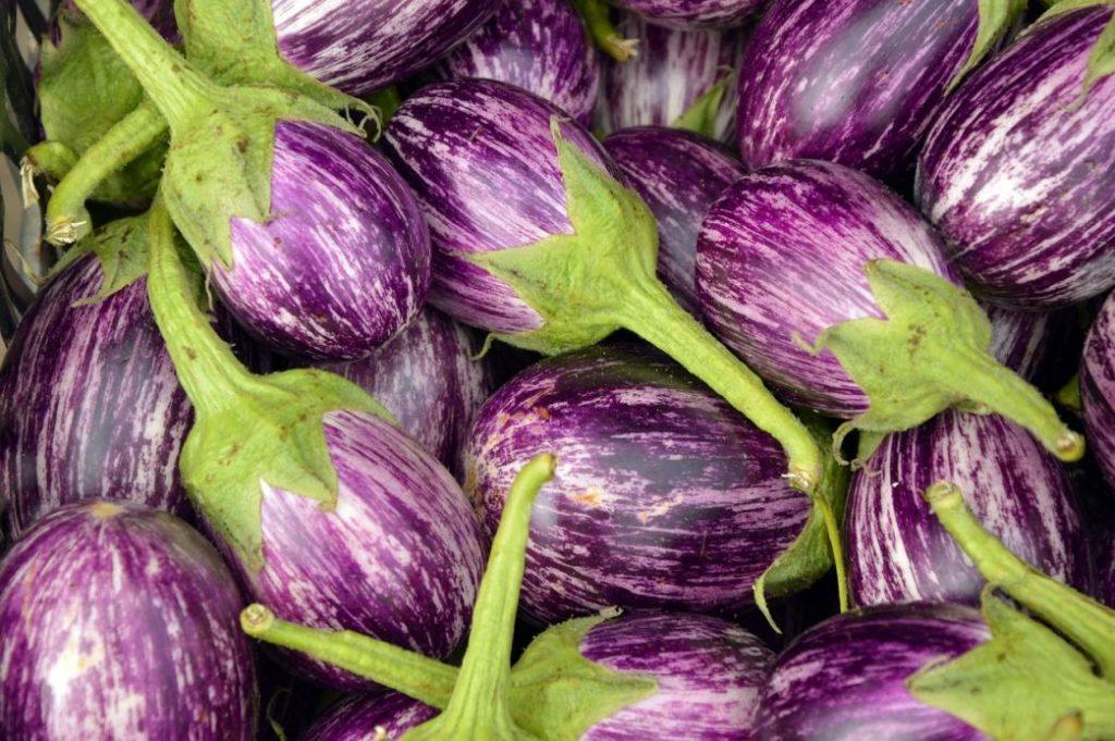 sonbaharda yetişen sebzelerden patlıcan