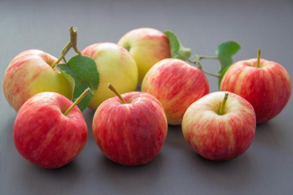sonbahar meyveleri nelerdir: elma