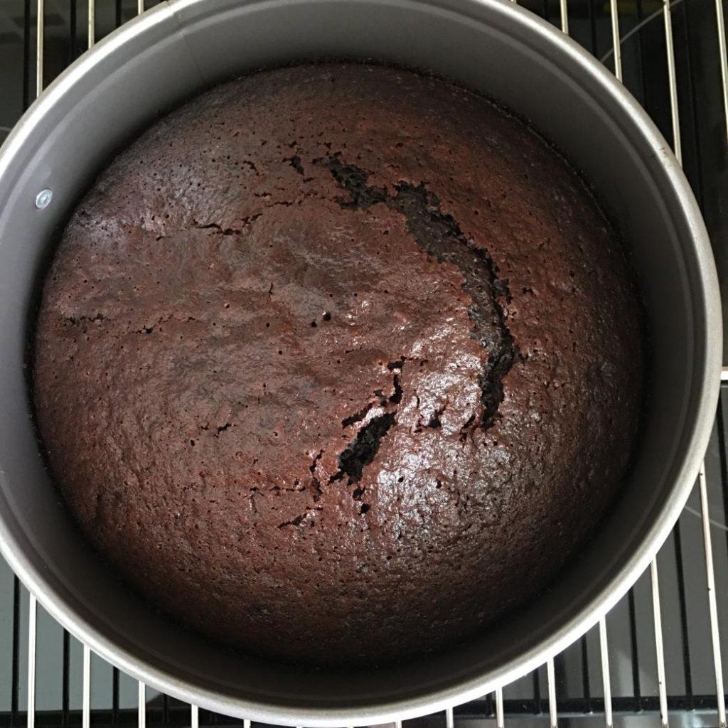 kolay kek tarifi kakaolu